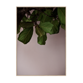 PAPER COLLECTIVE - GREEN LEAVES 50X70 PLAKAT