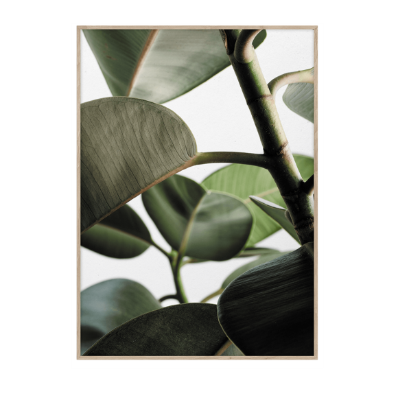 PAPER COLLECTIVE - GREEN HOME 03 50X70 PLAKAT